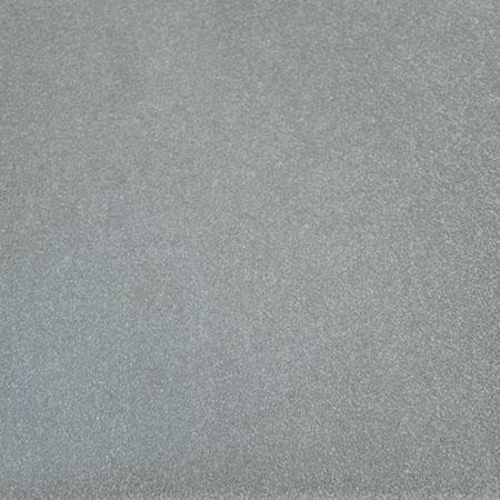 Bright-Argent-Powder-Coating-Color