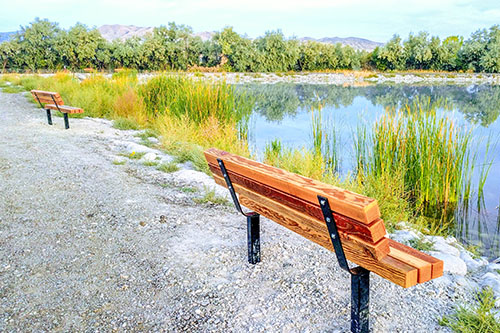 Wooden Lake Front Benches
